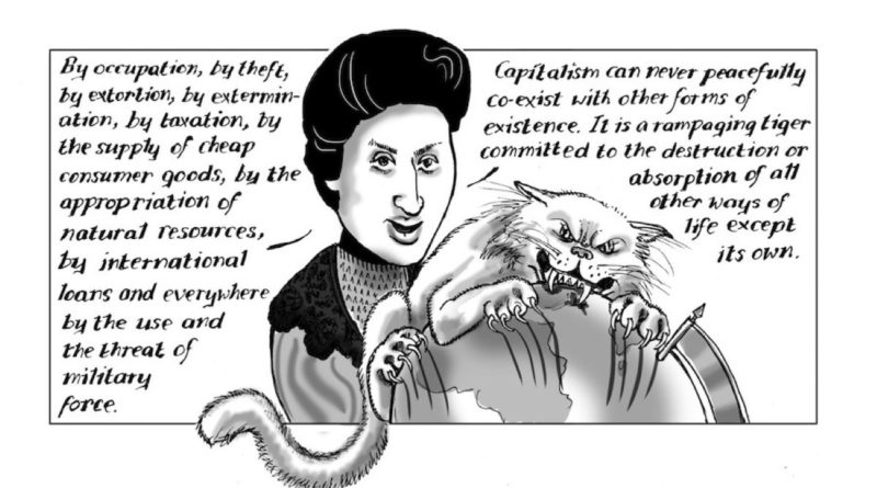 'The Oddest of Odd Corners': Rosa Luxemburg's Afterlife in Ceylon